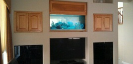 150 Gallon Custom Aquarium by Sunset Aquatics