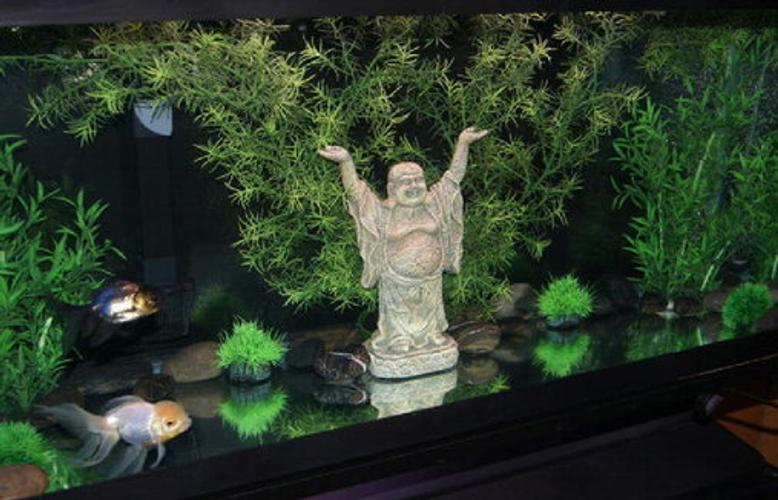 Aquarium decorations for How to decorate fish tank