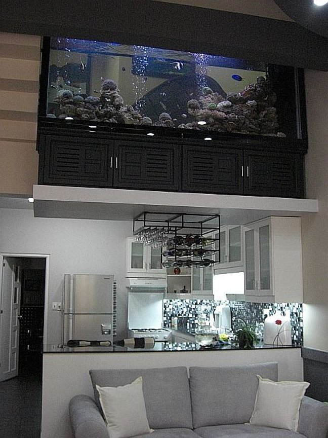700 gallons reef tank (mostly live coral and fish) - Yes...that is a 700 Gallon tank on that little ledge above the kitchen. 4 tonnes of weight (glass, rock, coral, filter coral, water, etc...) right there. Dont worry, even though the house was designed with no center walls or pillars, it was built with a skeleton framework to hold all that weight right there. Instead of a boring wall to divide the floors, this fish tank does the trick nicely.