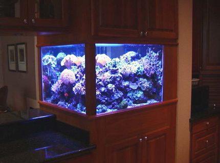 200 Gallon Saltwater Aquarium For Sale 1000 Aquarium Ideas