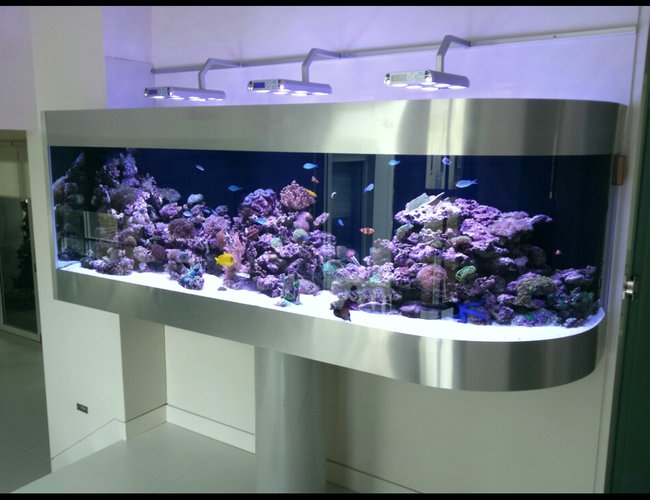 300 gallons reef tank (mostly live coral and fish) - Australian reef tank on pole support