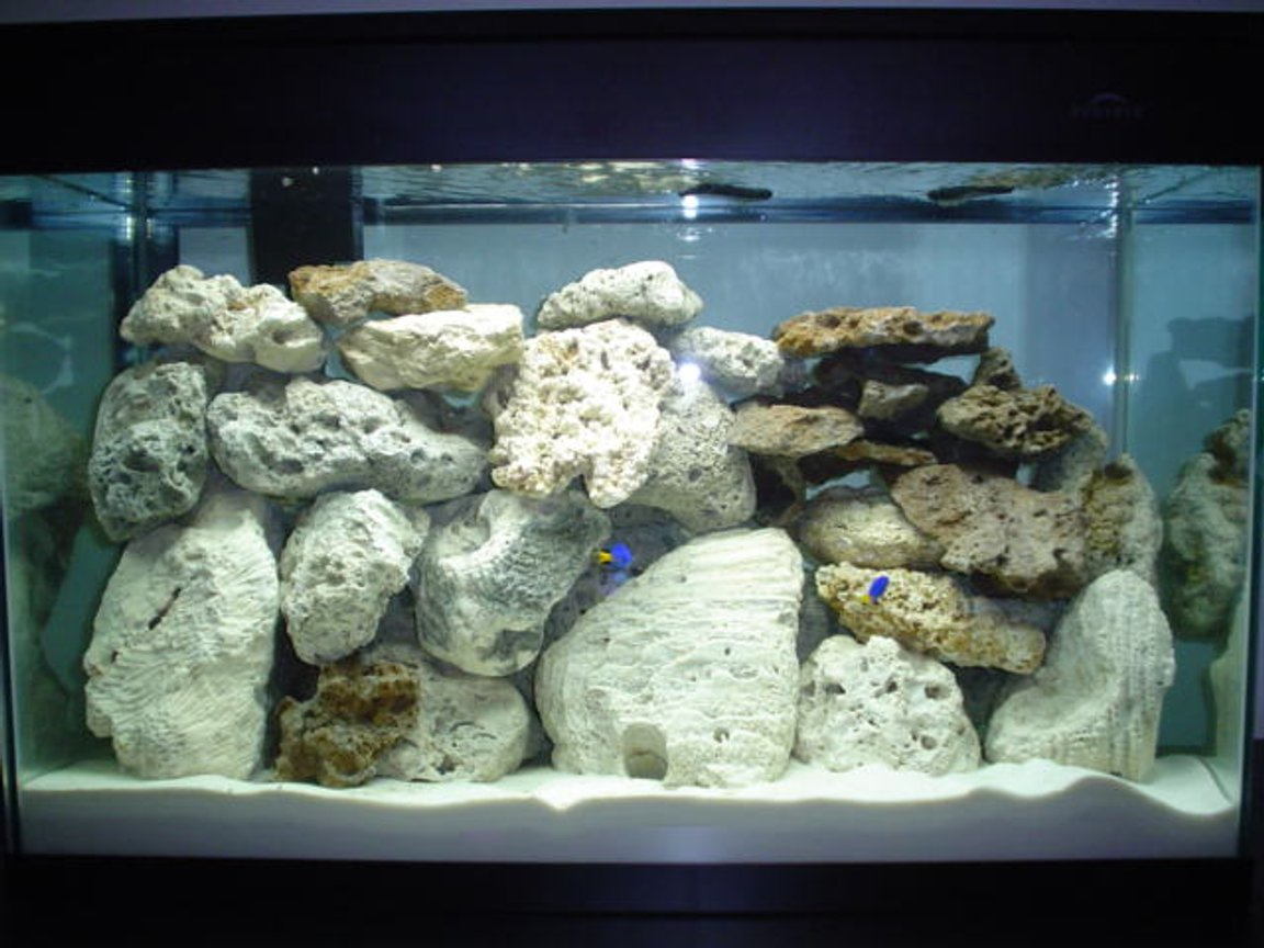 30 gallons saltwater fish tank (mostly fish, little/no live coral) - updated