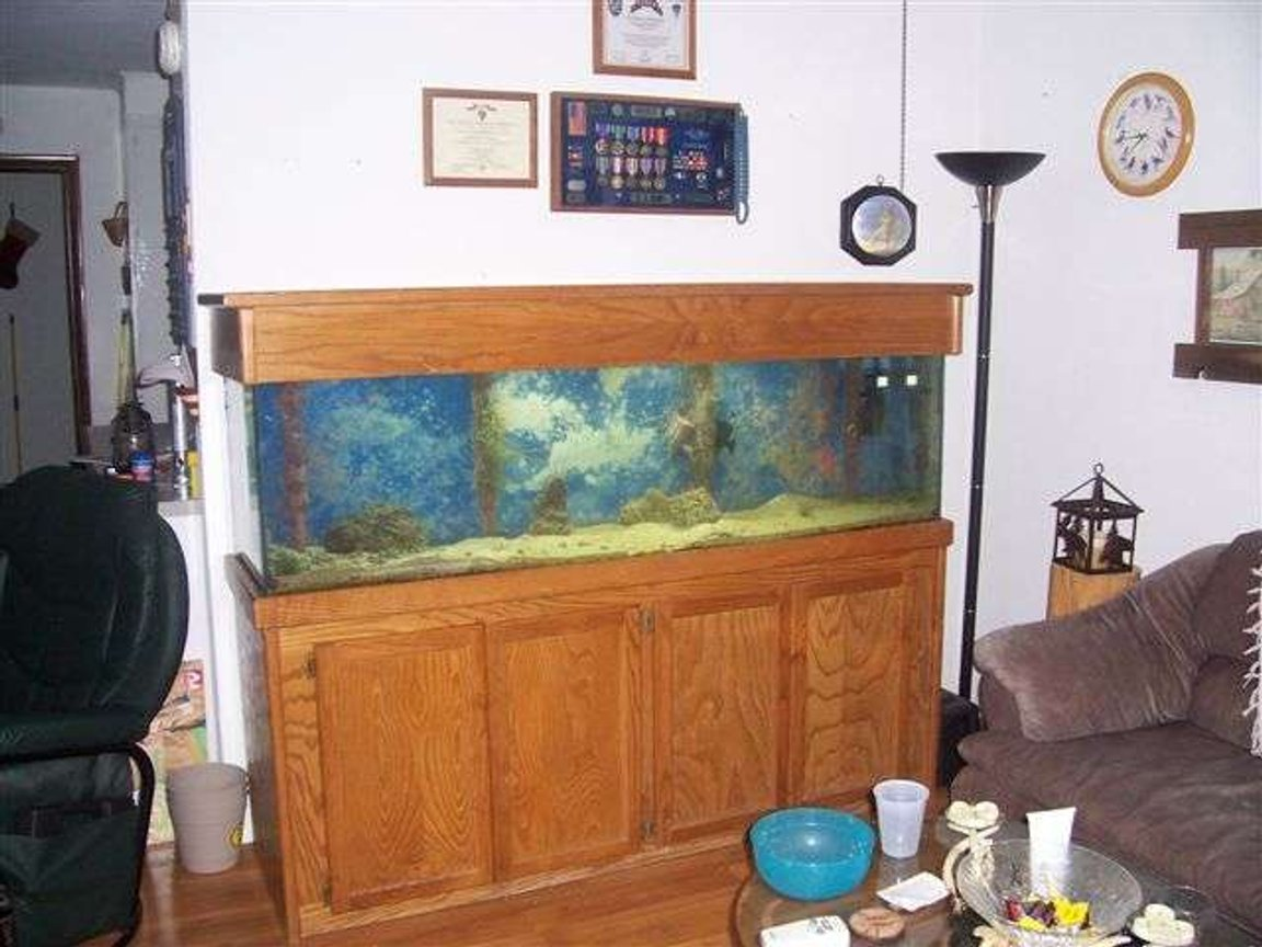 125 gallons saltwater fish tank (mostly fish, little/no live coral) - Finally got it. 125gal
