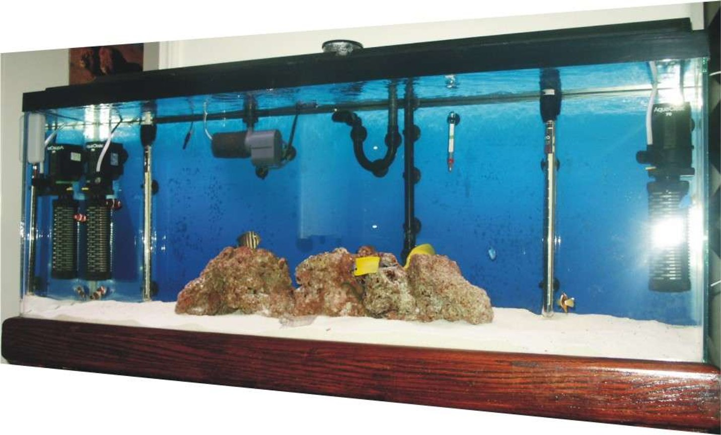 55 gallons saltwater fish tank (mostly fish, little/no live coral) - My tank is about 48x18x13 Currently I'm running a Cascade Canister Model-1000 a Sea Clone-150-Protein Skimmer 1- Coralife Turbo-Twist UV Sterilizer 2-Aqua-Clear Powerheads-(70) 2- 300-watt Hydro-Theo Submersible Heaters