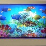 5 gallons saltwater fish tank (mostly fish, little/no live coral) - my fish