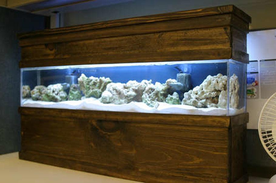 Most beautiful saltwater fish tanks 2007 for 200 gallon fish tank dimensions