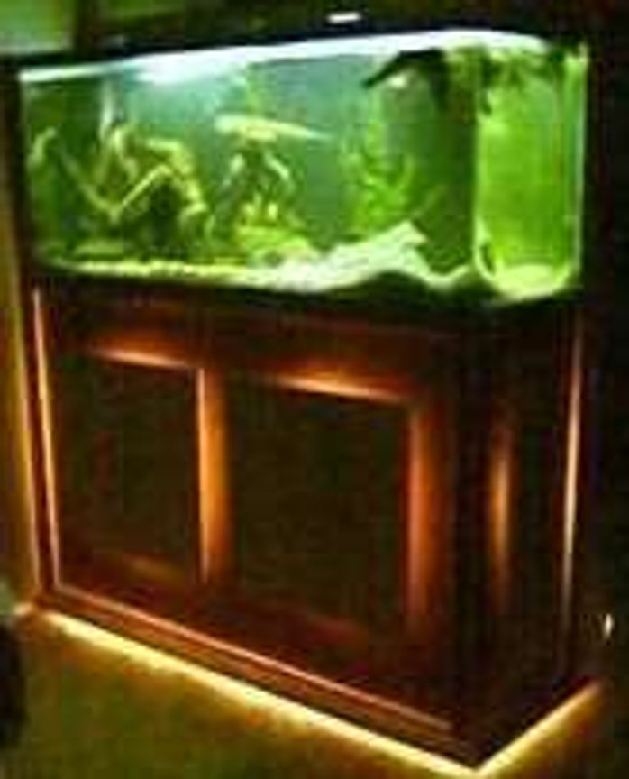120 gallons freshwater fish tank (mostly fish and non-living decorations) - 120 gallon tank custom stand