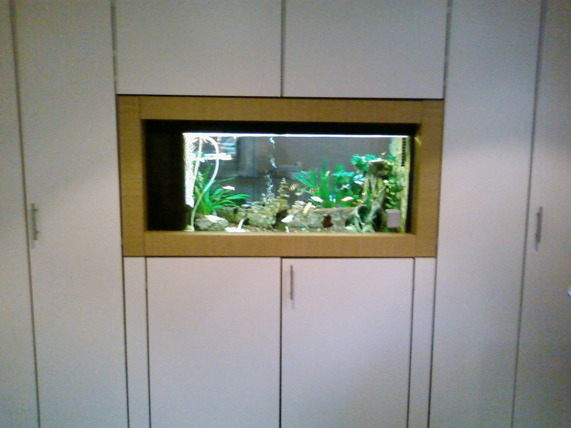 300 gallons freshwater fish tank (mostly fish and non-living decorations) - View from one side