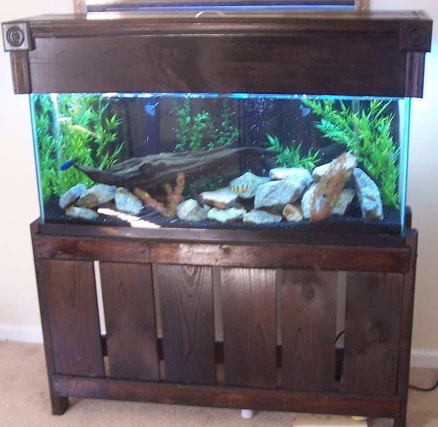 55 gallons freshwater fish tank (mostly fish and non-living decorations) - 55 gallon mixed malawi tank, with custom stand and canopy