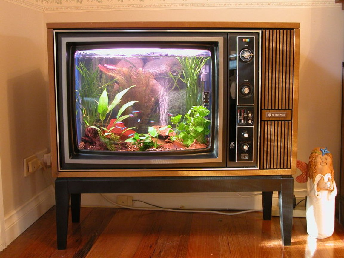 10 gallons freshwater fish tank (mostly fish and non-living decorations) - Old TV converted into Aquarium