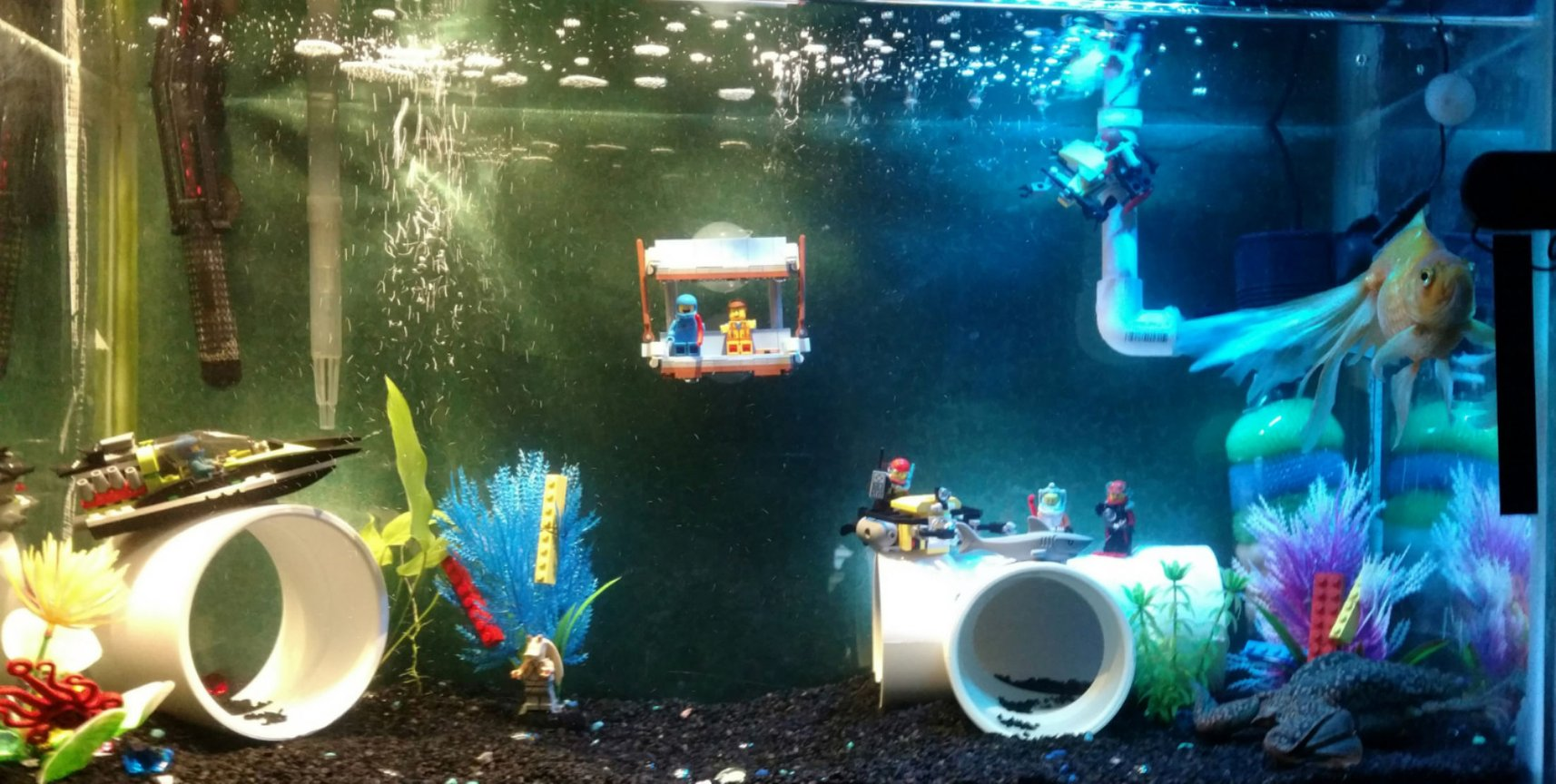 30 gallons freshwater fish tank (mostly fish and non-living decorations) - Lego City Aquarium.