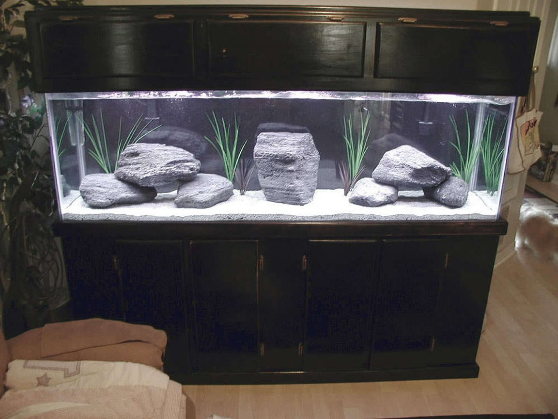 125 gallons freshwater fish tank (mostly fish and non-living decorations) - This is my new 125gl cichlid tank. It does not have any fish at this time. I used featherock, eco-complete african cichlid sand, and fake plants because cichlids love to dig. The featherock had to be cooked in the oven and dropped in a bucket of water to make them sink but the light weight of the rocks saved me alot of money at .50 cents a pound.