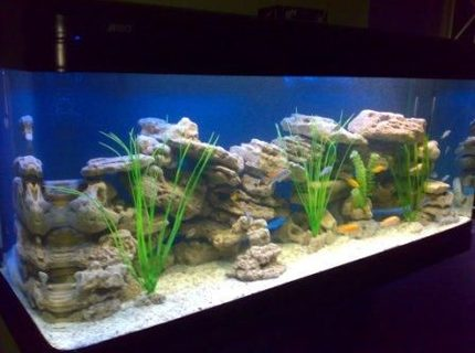 500 gallons freshwater fish tank (mostly fish and non-living decorations) - 500 Litres (1.5 x 0.65 x 0.65 m) African specias only