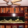 240 gallons freshwater fish tank (mostly fish and non-living decorations) - 240 gallon tropheus