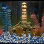 29 gallons freshwater fish tank (mostly fish and non-living decorations) - so many fish, so little time