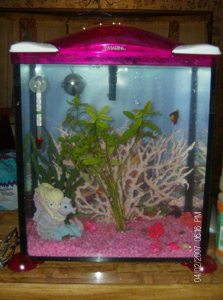 Paigiebear 39 s freshwater tanks photo id 8678 full for Little mermaid fish tank decor