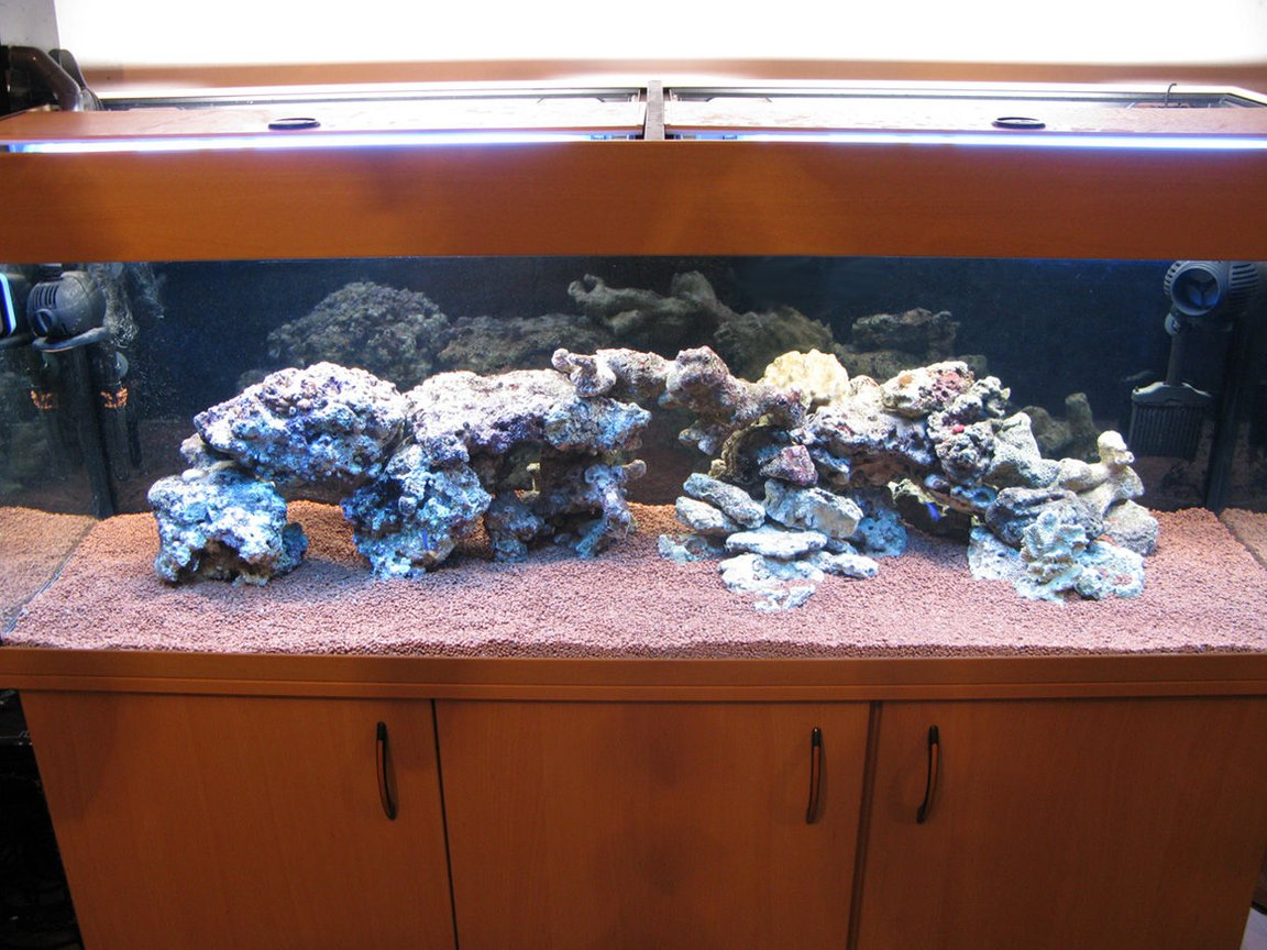 fish tank picture - live rock cured . attempt in acua scape harder than imagined