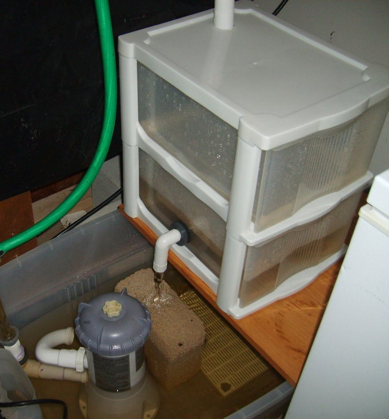fish tank picture - Homemade wet/dry filter. Total cost about 15 bucks. Made from stackable storage bins from a thrift shop. Top drawer is drilled for trickle distribution from the overflow box, and the bottom drawer is for bio media wich drains into the sump. Third drawer was not used, but could be inserted as another filtration tier.
