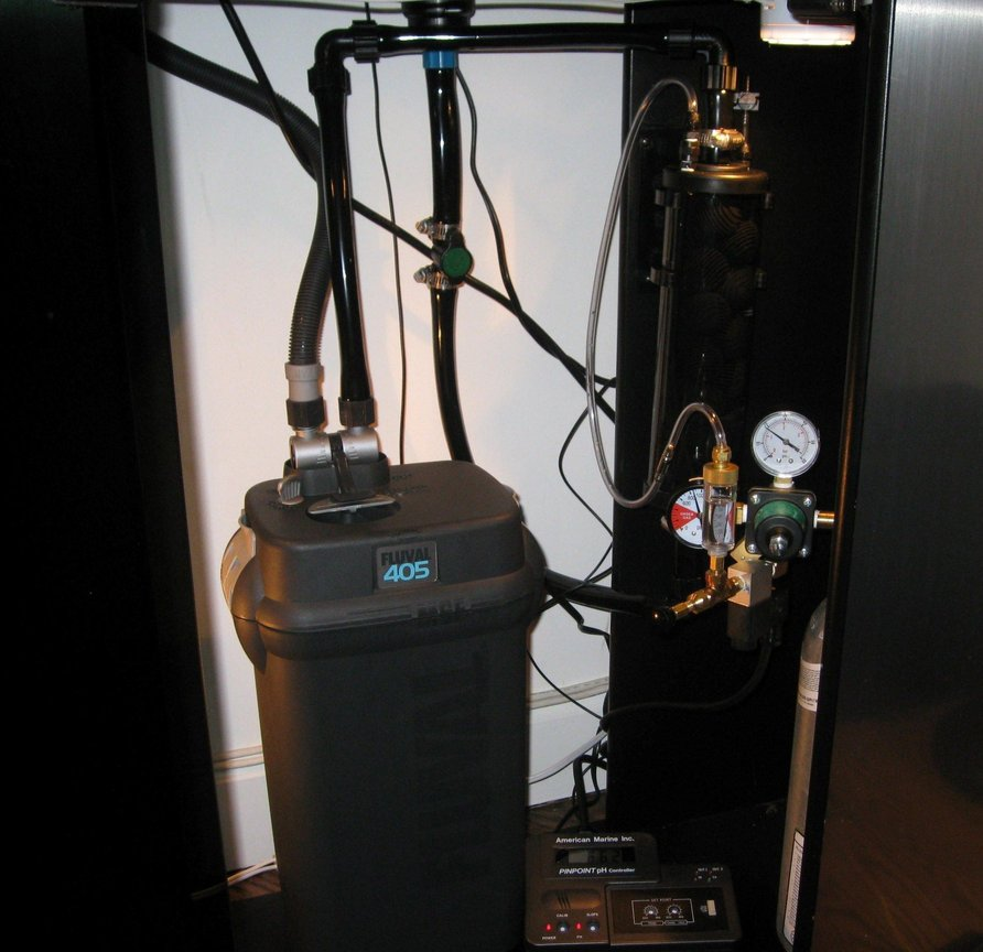 fish tank picture - CO2 system