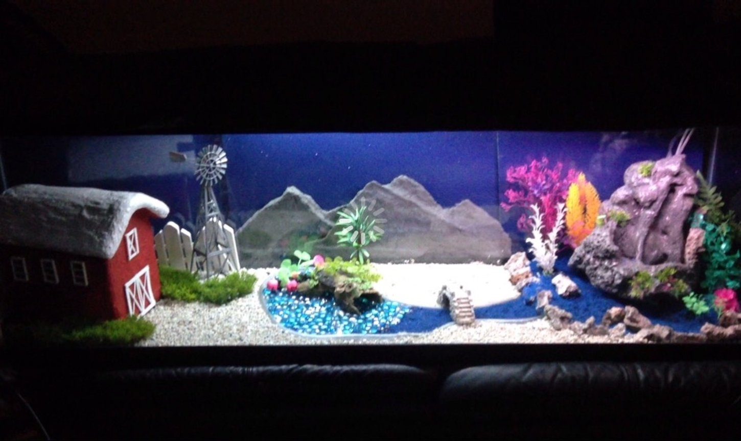 fish tank picture - My Country Farm Theme fish tank. Huge waterfall that flows sand out from it, stars that light up at night in the background, and a windmill that spins continuously. Checkout my other themes