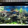 fish tank picture - Diff.View3