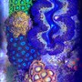 fish tank picture - Above view of my Zoa garden and clam
