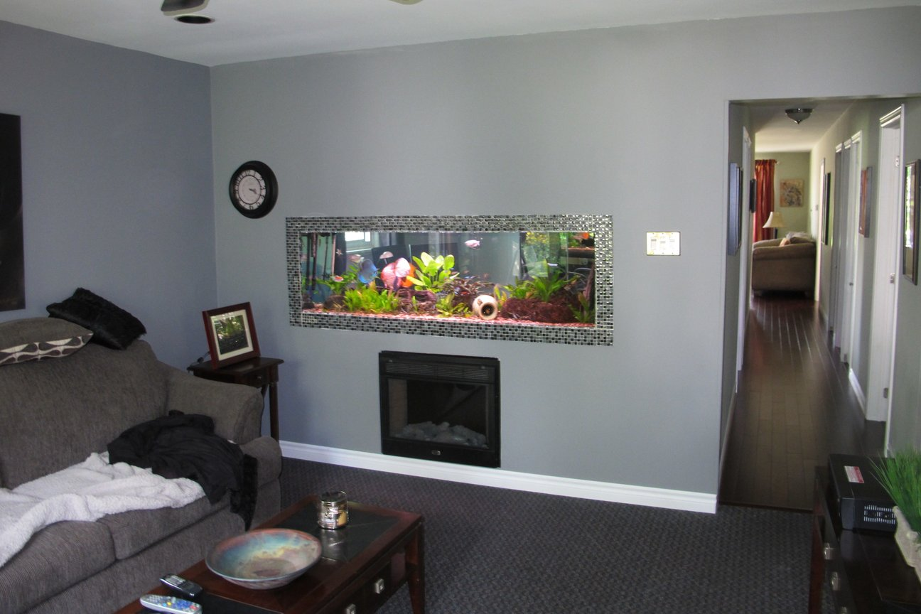 180 gallons planted tank (mostly live plants and fish) - 180 gallon aquarium built into living room wall, it is open on both side so I can enjoy the fish in the office as well.